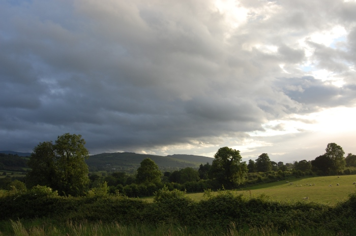 Ireland 2010 025