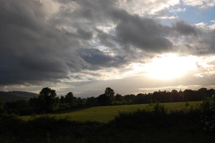 Ireland 2010 026